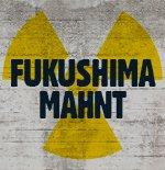 Sieben Jahre Atomkatastrophe